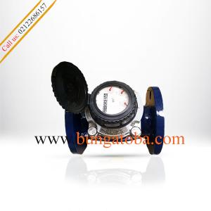 Water meter sensus 2 inch wp dynamic