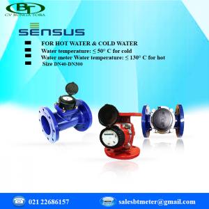Flow meter sensus